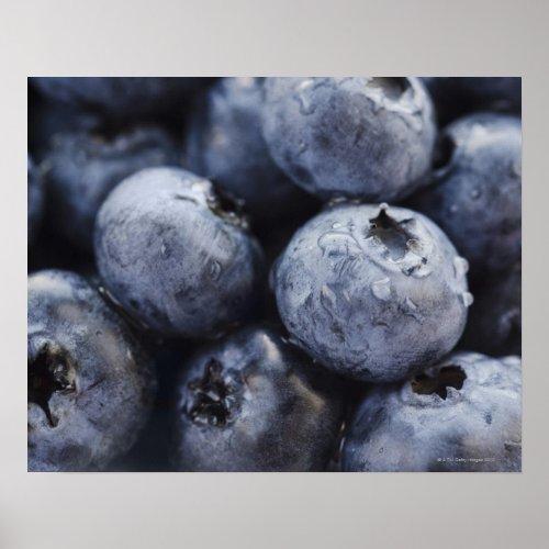 Studio shot of blueberries 3 poster