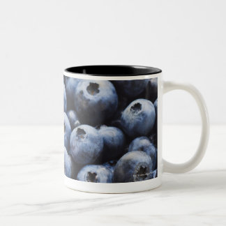 Studio shot of blueberries Two-Tone coffee mug