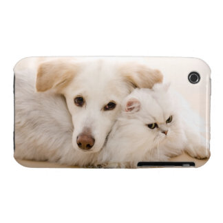 Studio shot of cat and dog iPhone 3 cases