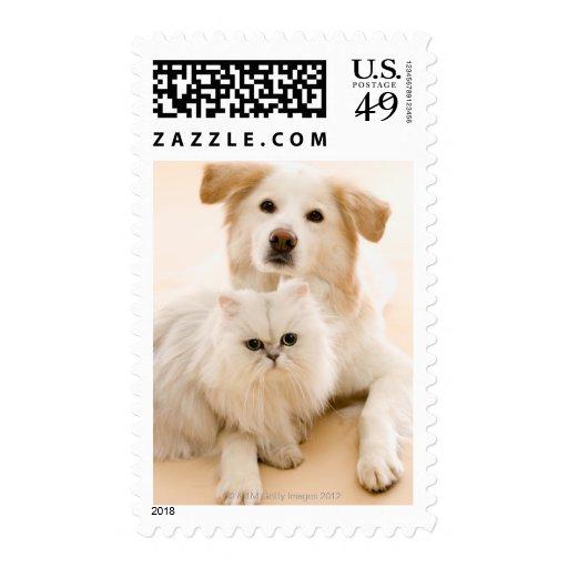 Studio shot of cat and dog stamp