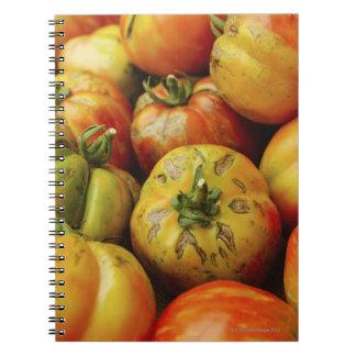 Studio shot of heirloom tomatoes note books