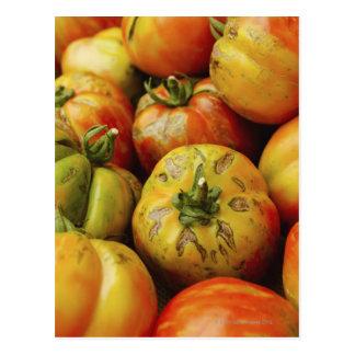 Studio shot of heirloom tomatoes post card