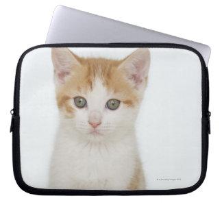 Studio shot of kitten laptop computer sleeve