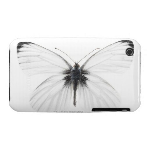 Studio shot of sharp-veined white butterfly Case-Mate iPhone 3 cases