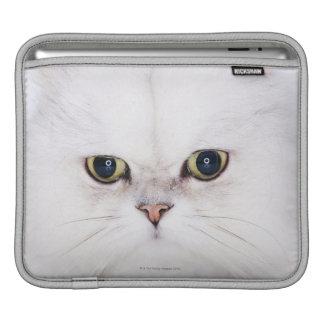 Studio shot of white Persian cat iPad Sleeves