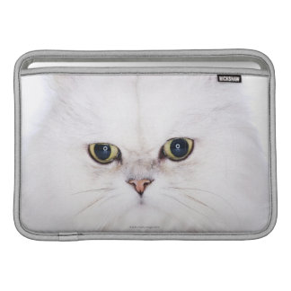 Studio shot of white Persian cat MacBook Sleeve
