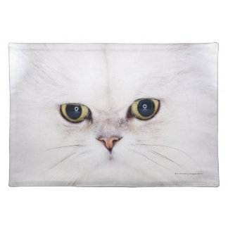 Studio shot of white Persian cat Placemats