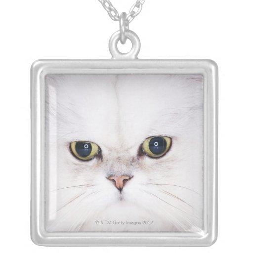 Studio shot of white Persian cat Square Pendant Necklace