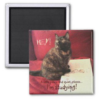 Studious Cat Magnet
