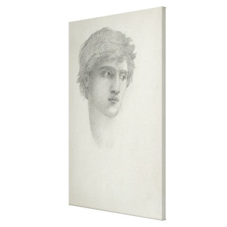 Study for the Head of Perseus (pencil on paper) Canvas Print