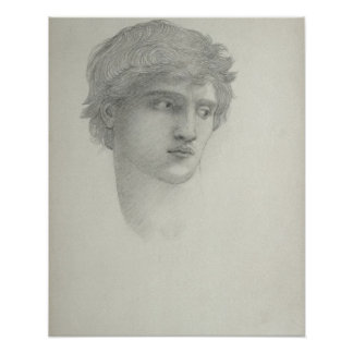 Study for the Head of Perseus (pencil on paper) Poster