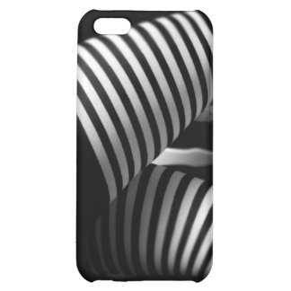 Study in Black & White iPhone 5C Cases