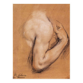Study of a Bent Right Arm postcard