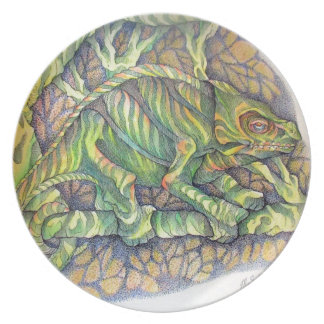 Study of A Chamelion Plate