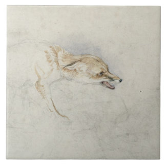 Study of a crouching Fox, facing right verso: fain Ceramic Tile