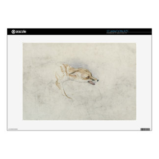 Study of a crouching Fox, facing right verso: fain Decals For Laptops