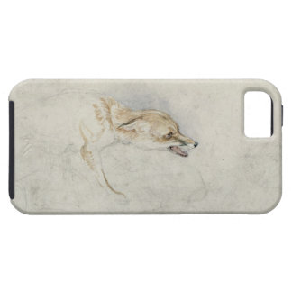 Study of a crouching Fox, facing right verso: fain iPhone SE/5/5s Case