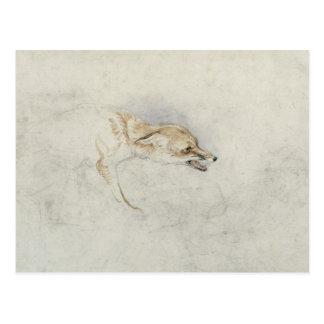 Study of a crouching Fox, facing right verso: fain Postcard