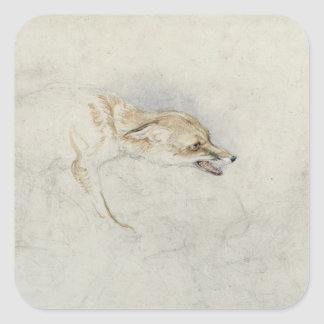 Study of a crouching Fox, facing right verso: fain Square Sticker