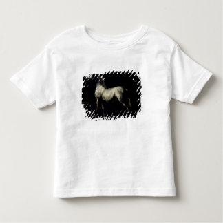 Study of a Dapple Grey Toddler T-shirt