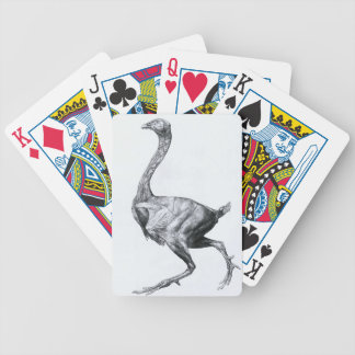 Study of a Fowl Lateral View Bicycle Playing Cards