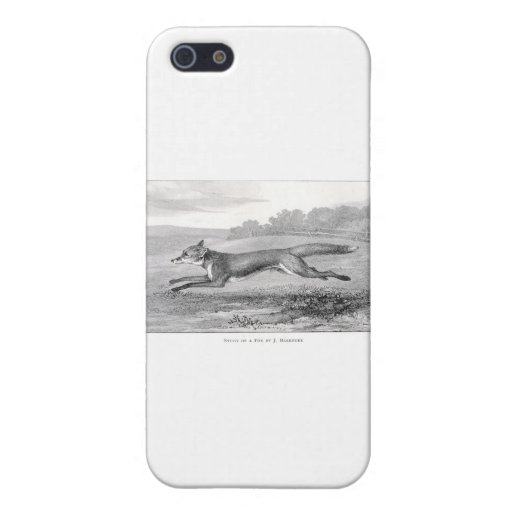 Study of a Fox Case For iPhone 5/5S