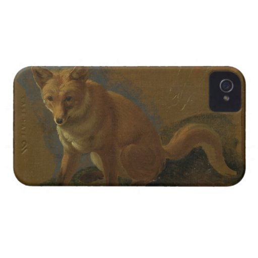 Study of a Fox (oil on panel) Case-Mate iPhone 4 Cases