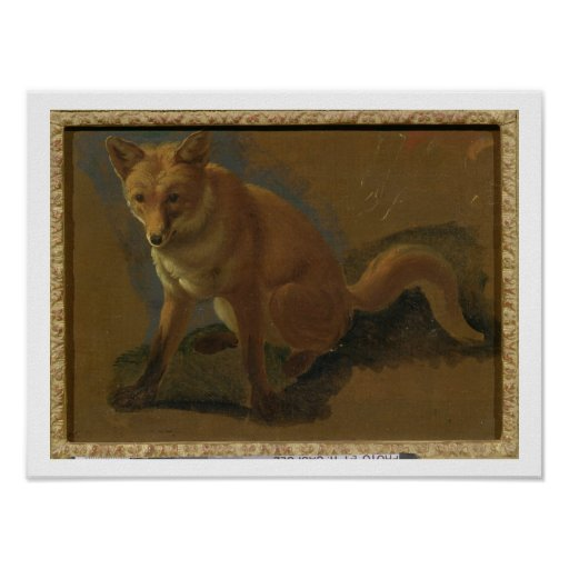 Study of a Fox (oil on panel) Poster