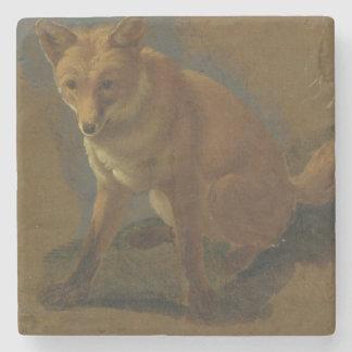 Study of a Fox (oil on panel) Stone Coaster