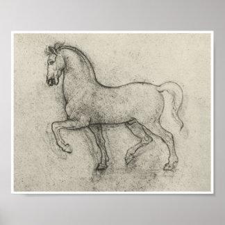 Study of a Horse, Leonardo Da Vinci Poster