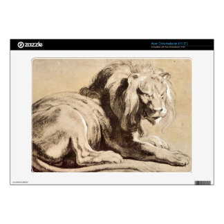 Study of a Lion by Paul Rubens Acer Chromebook Decal