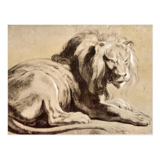 Study of a Lion by Paul Rubens Post Card