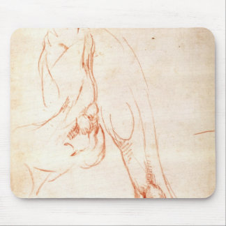 Study of a lower leg and foot mouse pad