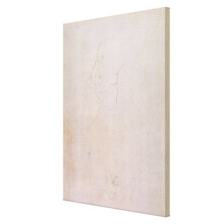 Study of a male torso canvas print