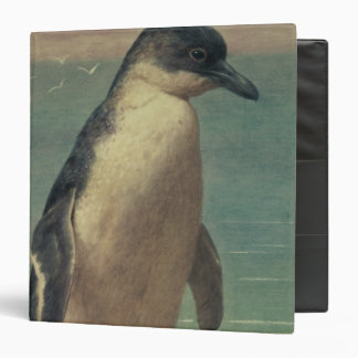 Study of a Penguin 3 Ring Binders