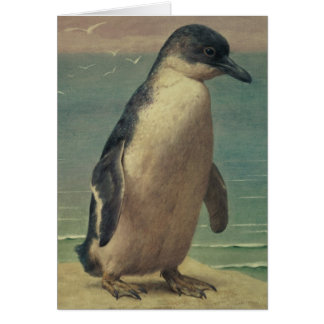 Study of a Penguin Greeting Card