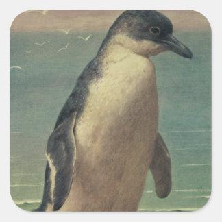 Study of a Penguin Square Sticker