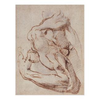 Study of an Arm  Inv.1859/5/14/819 Postcard