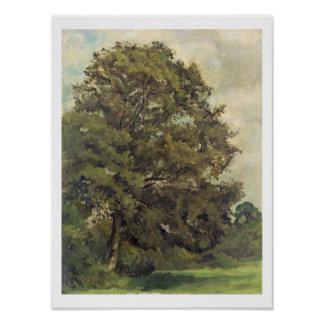 Study of an Ash Tree, c.1851 (oil on paper on pane Poster