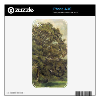 Study of an Ash Tree, c.1851 (oil on paper on pane Skins For The iPhone 4