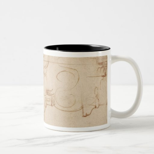 Study of an Ionic capital Mugs