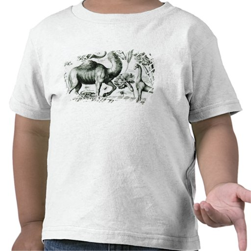 Study of Animals and Flowers, engraved T-shirt