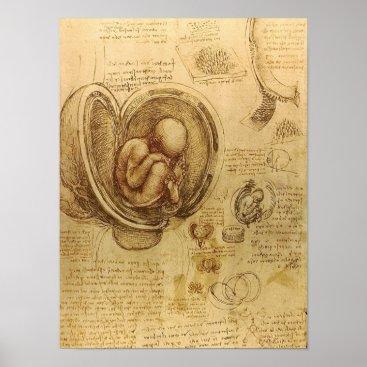 Toddler & Baby themed Study of baby fetus by Leonardo da Vinci Poster