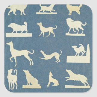 Study of Dogs Square Sticker