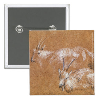 Study of Goats (drawing) 2 Inch Square Button