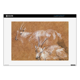 Study of Goats (drawing) Laptop Decal