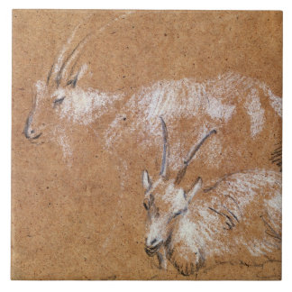 Study of Goats (drawing) Tile