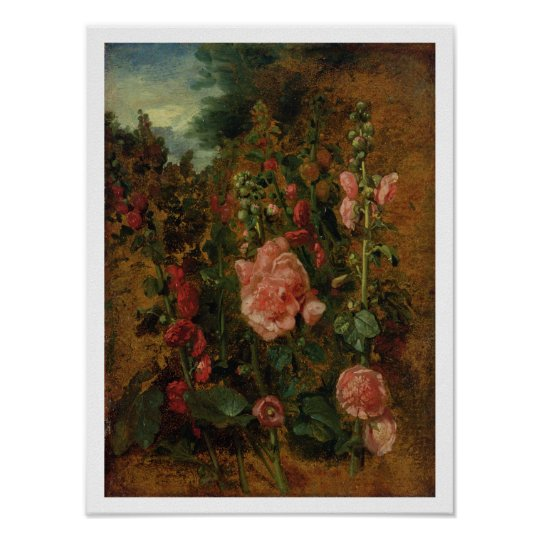 Study of Hollyhocks, c.1826 (oil on board) Poster