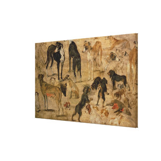 Study of Hounds, 1616 Canvas Print