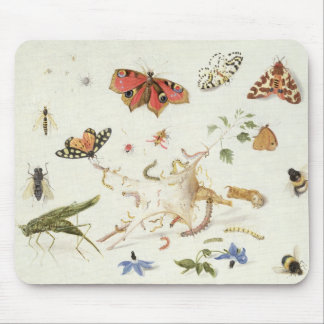 Study of Insects and Flowers Mouse Pad